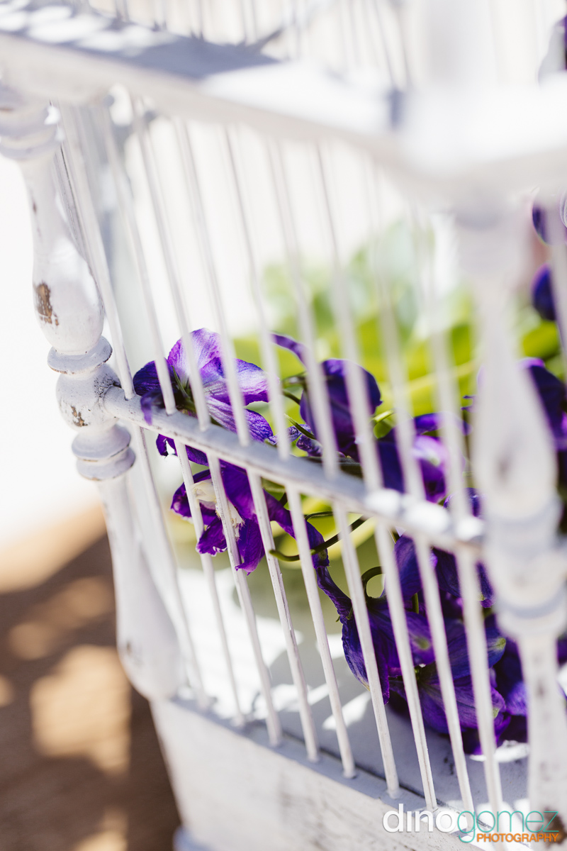Closeup of a white bird cage with flowers inside
