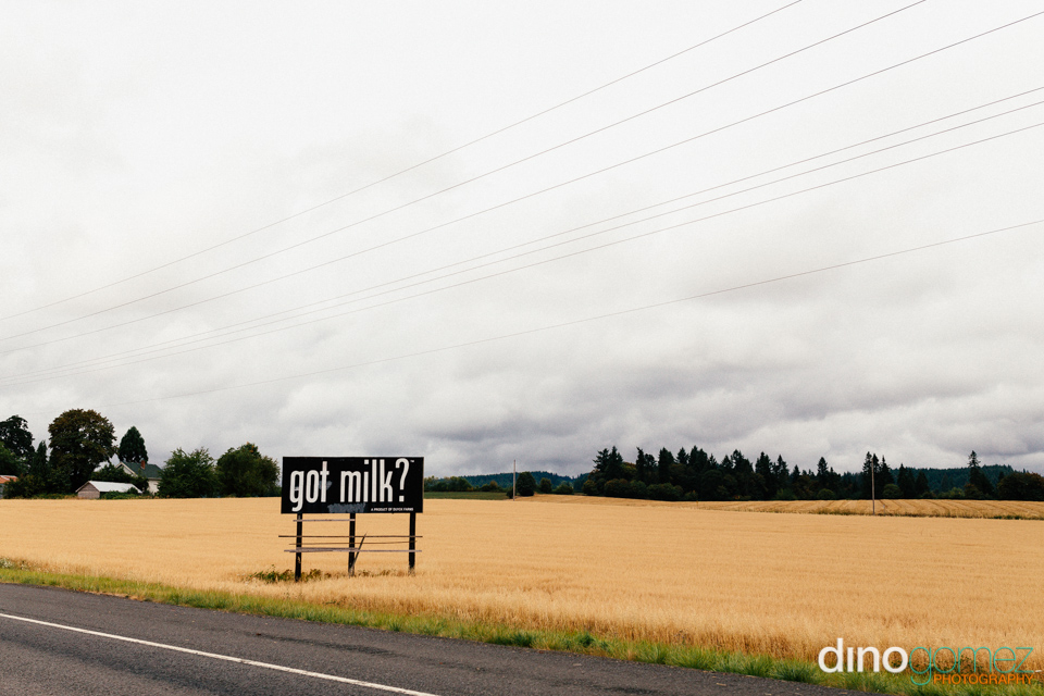 Got milk road sign at the side of the road in Portland by photographer Dino Gomez