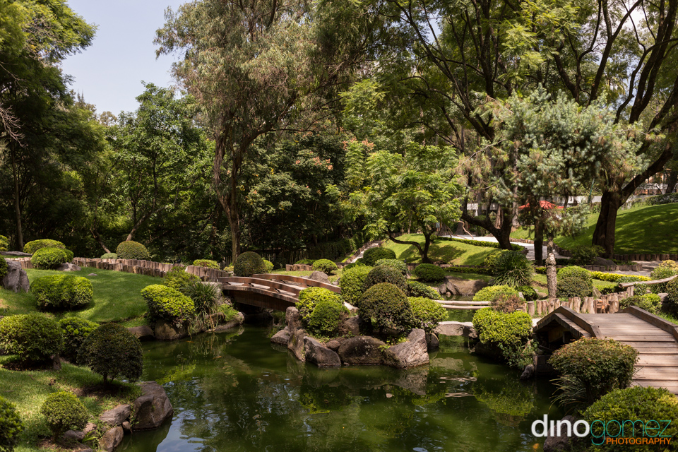 Amazingly beautiful shot of a park in Guadalajara by Mexico photographer Dino Gomez