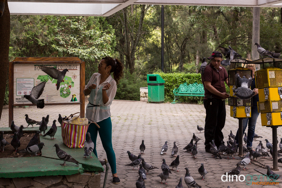 Snap of a man and woman feeding the birds by photographer Dion Gomez