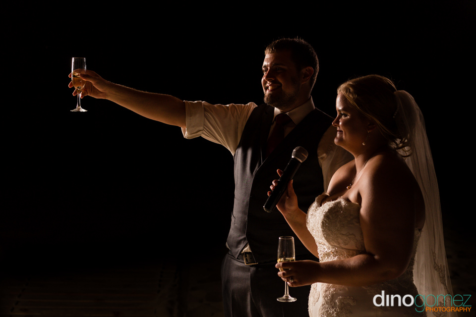 Bride and groom toasting at the wedding reception in Los Cabos Mexico