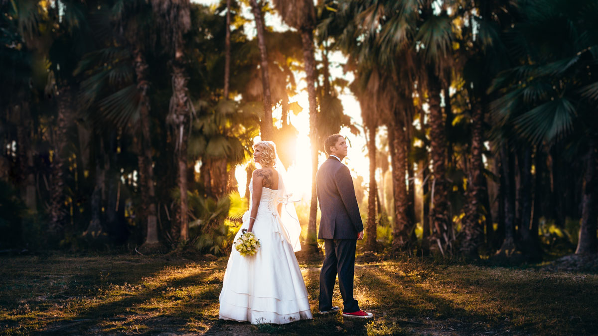 A Shot Of A Bride And Groom Standing Back To Back In An Open Area With Some Palm Trees And The Sunset As The Backdrop By Wedding Photographer Dino Gomez