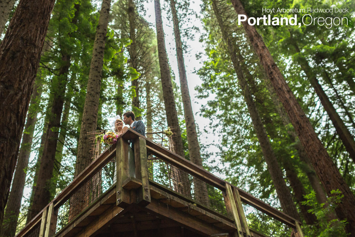 bride and groom overlooking at the redwood deck portland