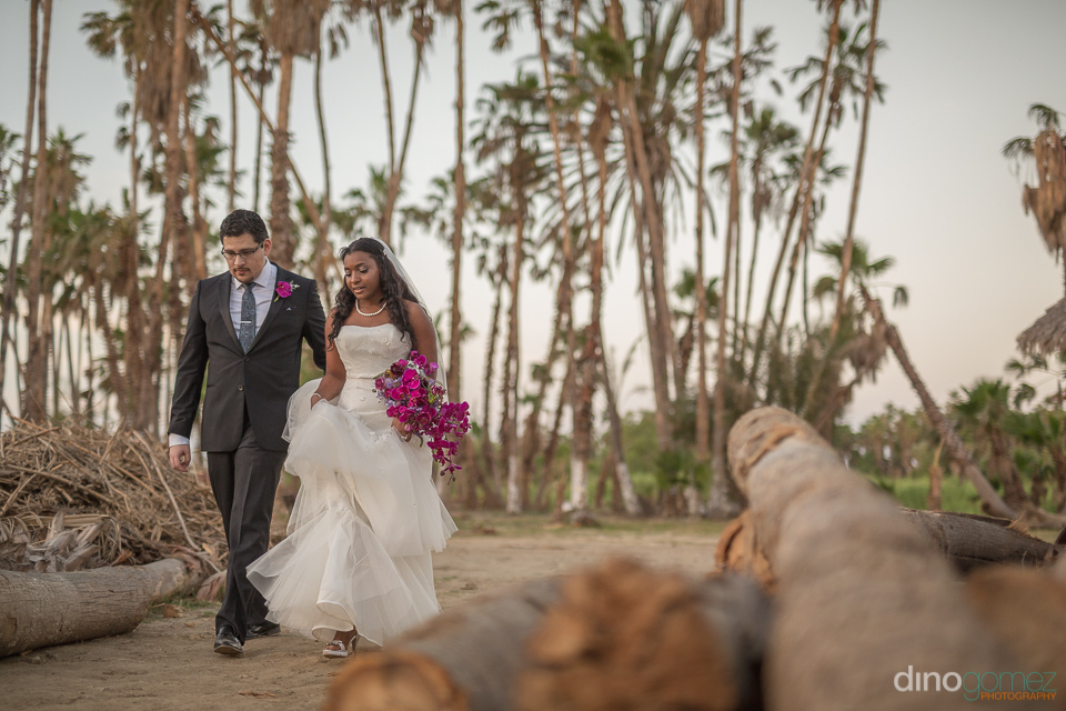 Bride and groom walking next to trees - Wedding Photographer in