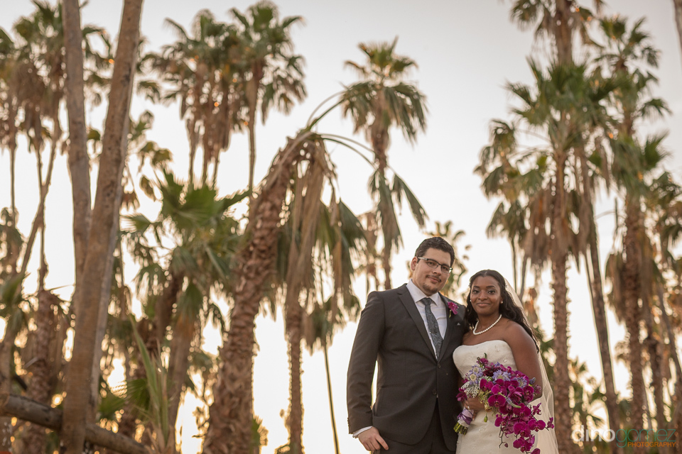 Bride and groom with trees - Wedding Photographer in Mexico