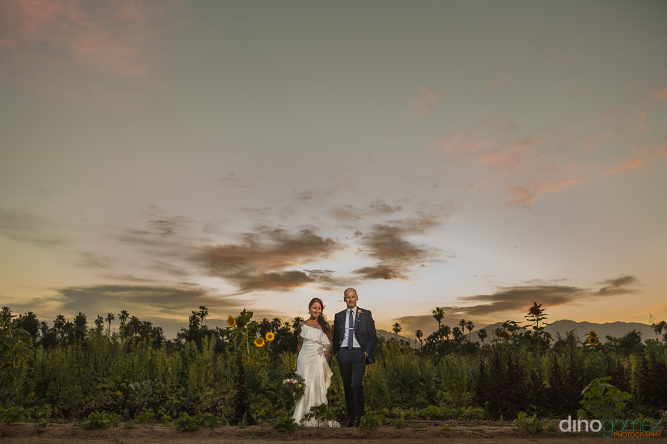 Couple at Flora Farm Los Cabos sunset Photo