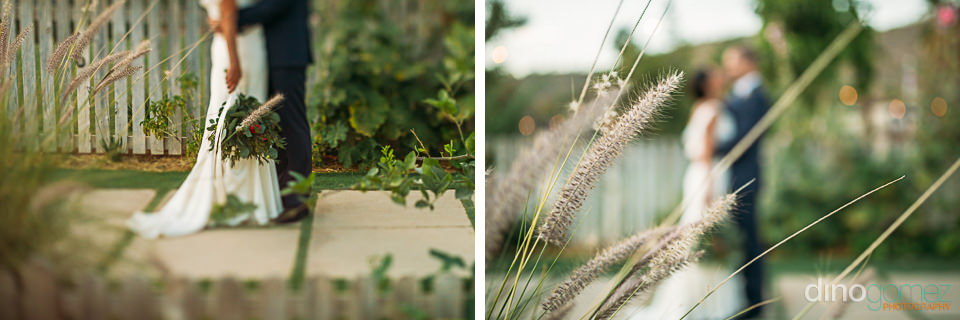 Freelensing photograph of a couple behind some tall grass