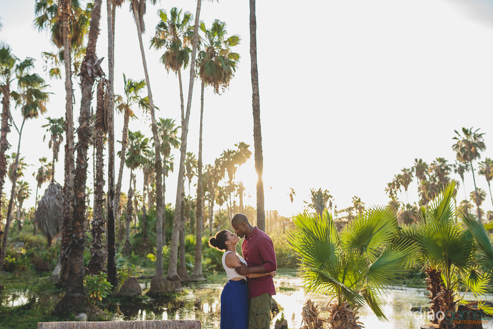 Cabo destination wedding in tropical oasis