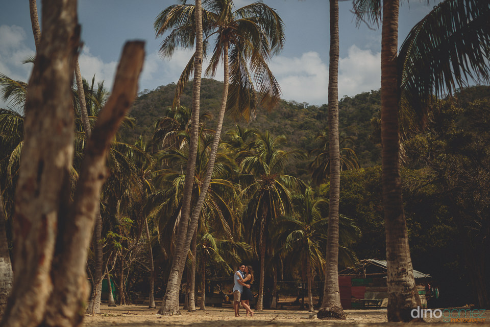newlyweds stand among tall palm trees near the beach in tayrona
