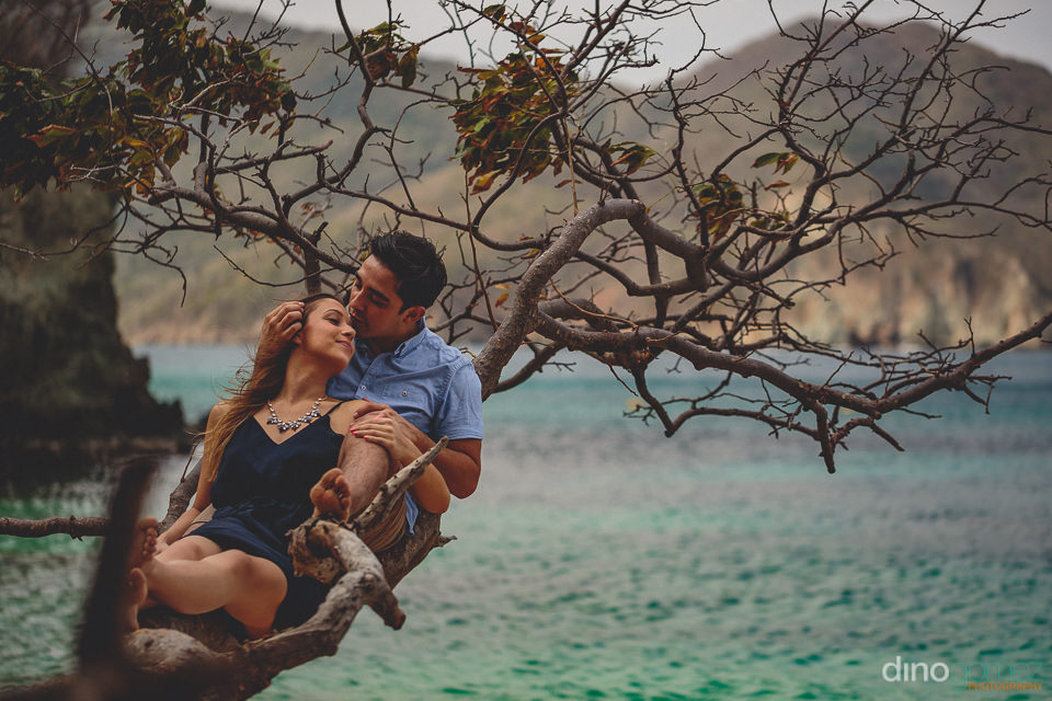 newlyweds sit in a tree in national park tayrona colombia during