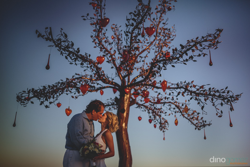 husband and wife kiss under the newlyweds tree at las ventanas a