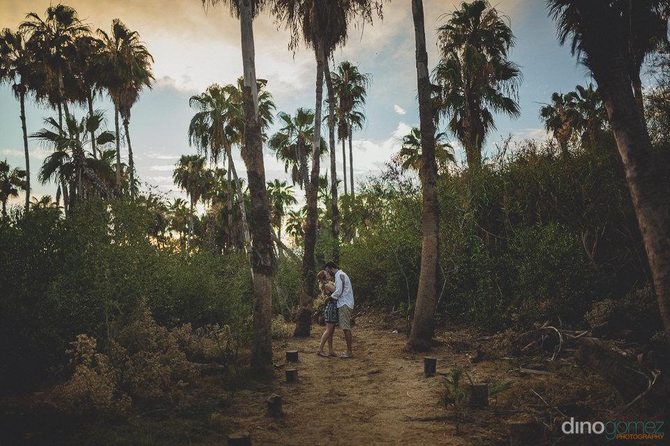 newlyweds kiss under palm trees blue sky photo by dino gomez los