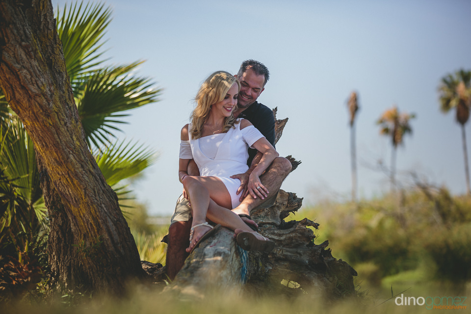 newlyweds sit on fallen palm tree in cabo mexico destination wed