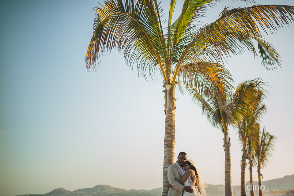 newlyweds hug under palm trees on the beach in cabo