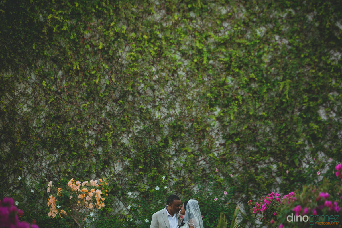 newlyweds stand in front of huge wall covered in lush green ivy