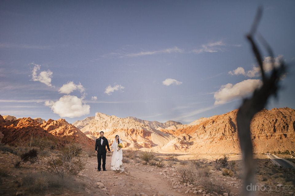 star wars newlyweds in nevada desert that looks like tatooine de