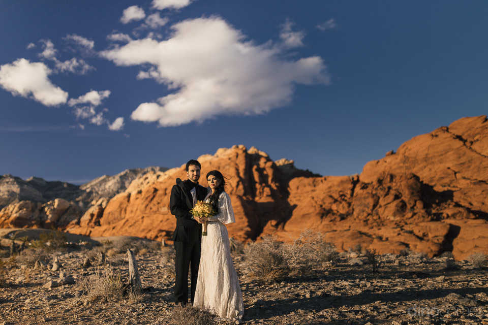 newlyweds still in suit and dress stand under blue nevada sky wi