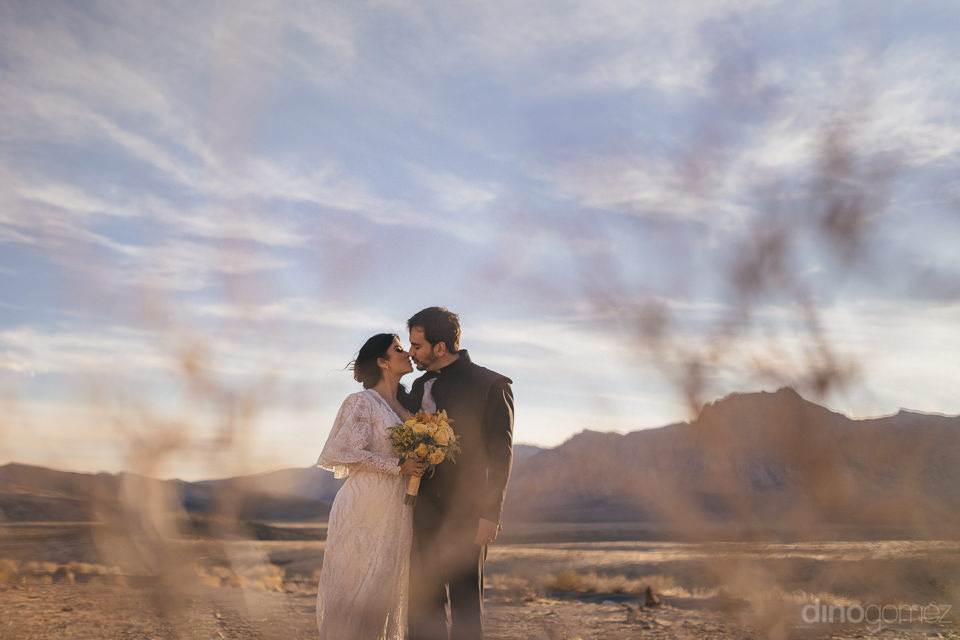 photo through desert grass of newlywed couple kissing in the nev