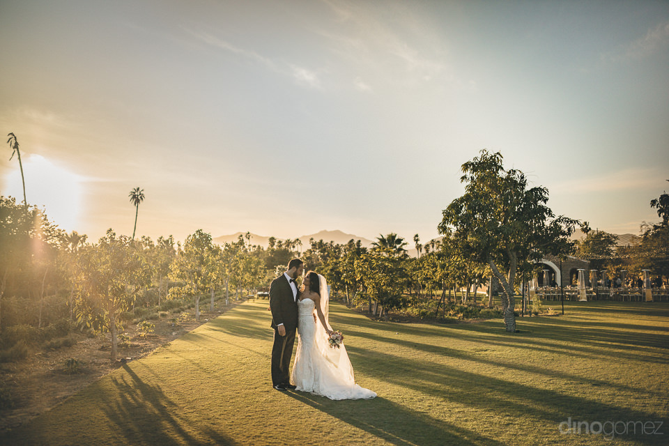 sunset newlyweds in mango orchard organic garden in los cabos