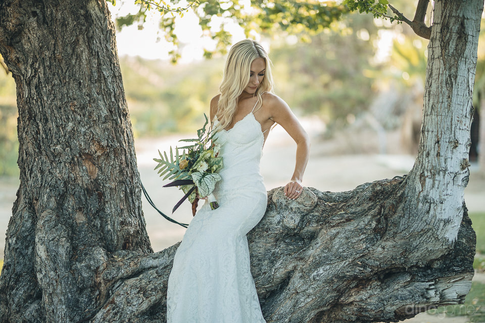 bride sits in tree holding bouquet made by pina hernandez of los