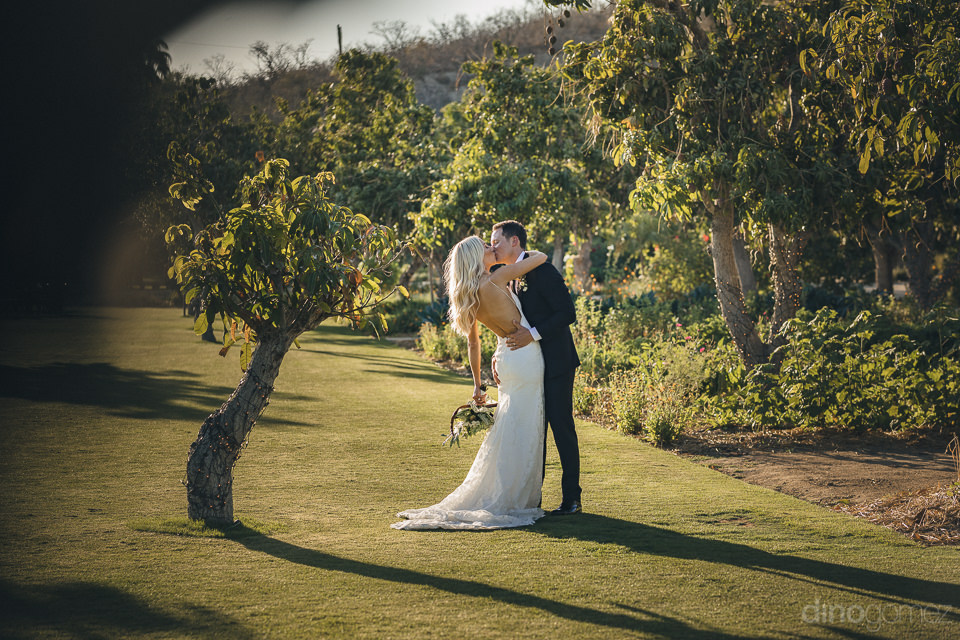 chic newlyweds kiss at flora farms wedding photographed by dino