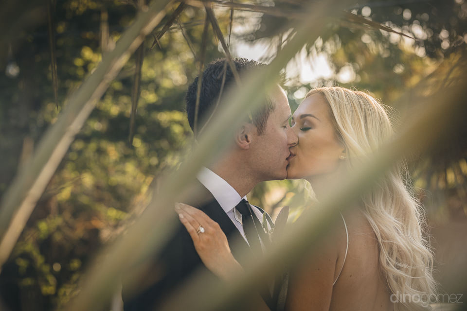 flora farms wedding photo newlyweds in mango grove kissing photo
