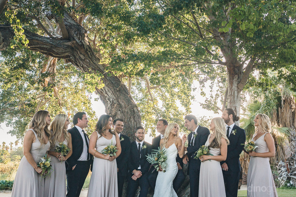 entire wedding party gathered under tree in wedding photo by din