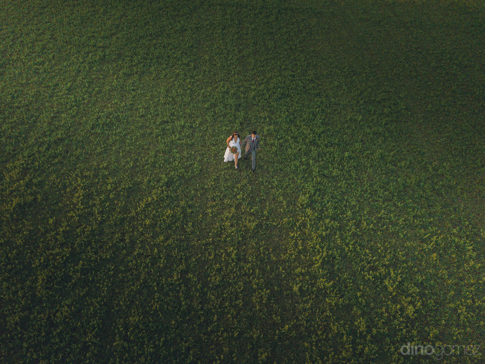 aerial photo of newlywed bride groom walking through perfect gre