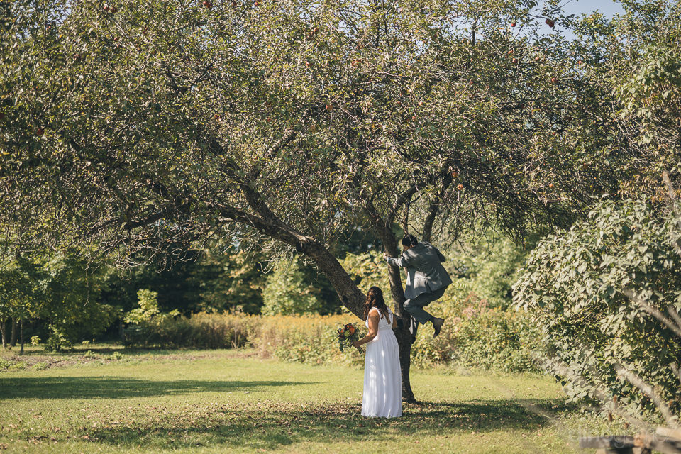 funny wedding photo of groom climbing a tree