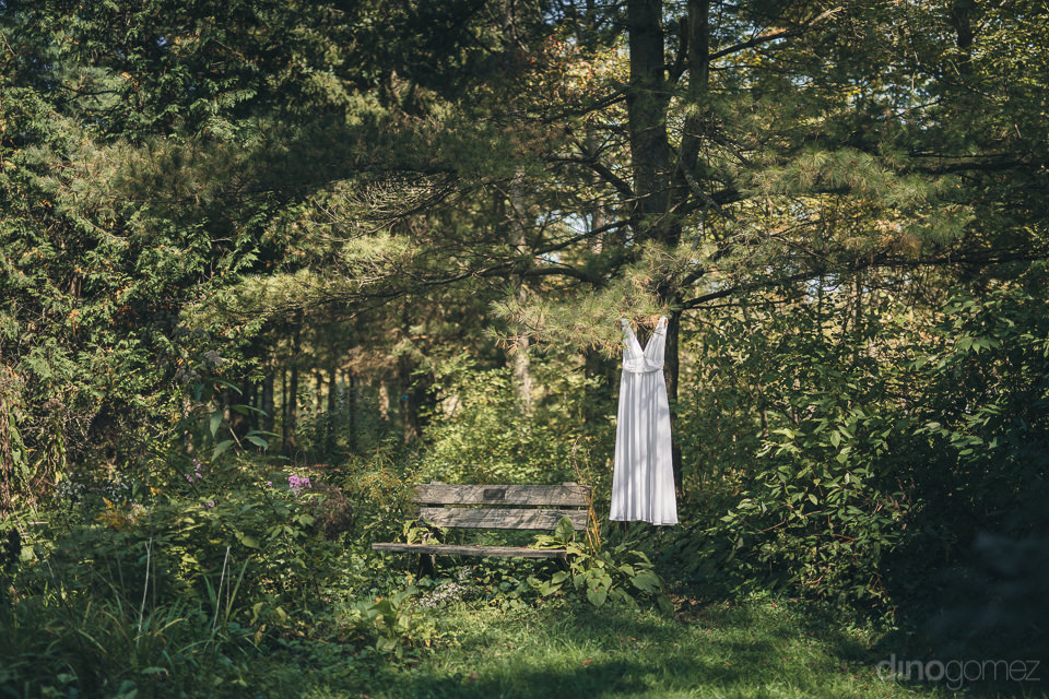 white wedding dress hanging in green forest in upstate new york