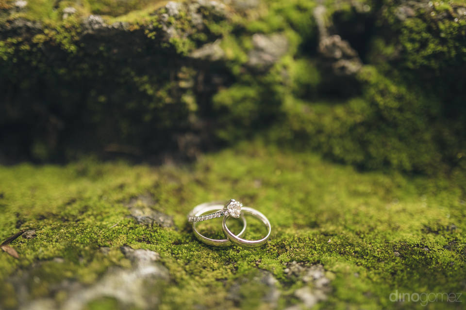 wedding rings sit on green mossy steps