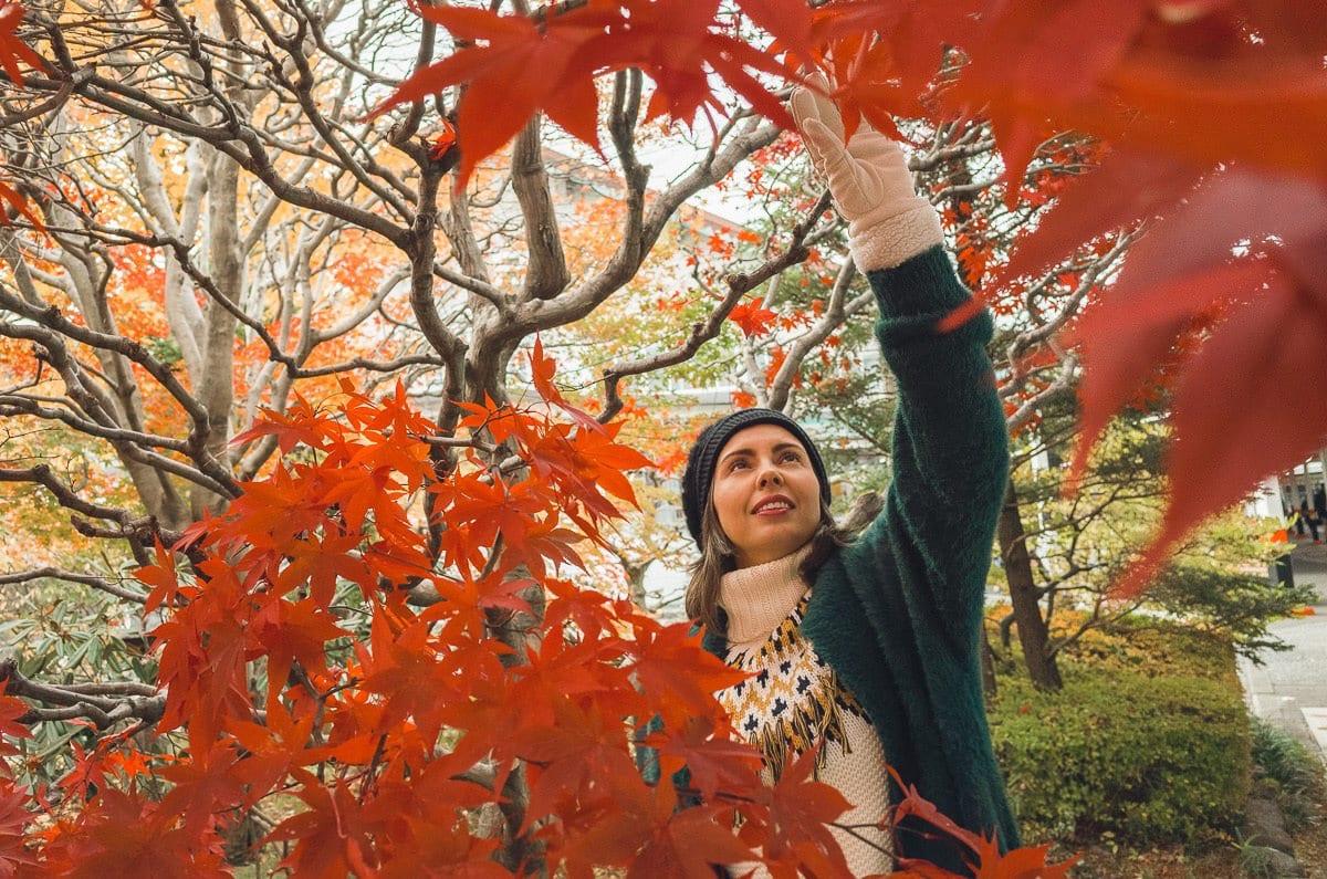Visiting Nikko, near Tokyo in autumn