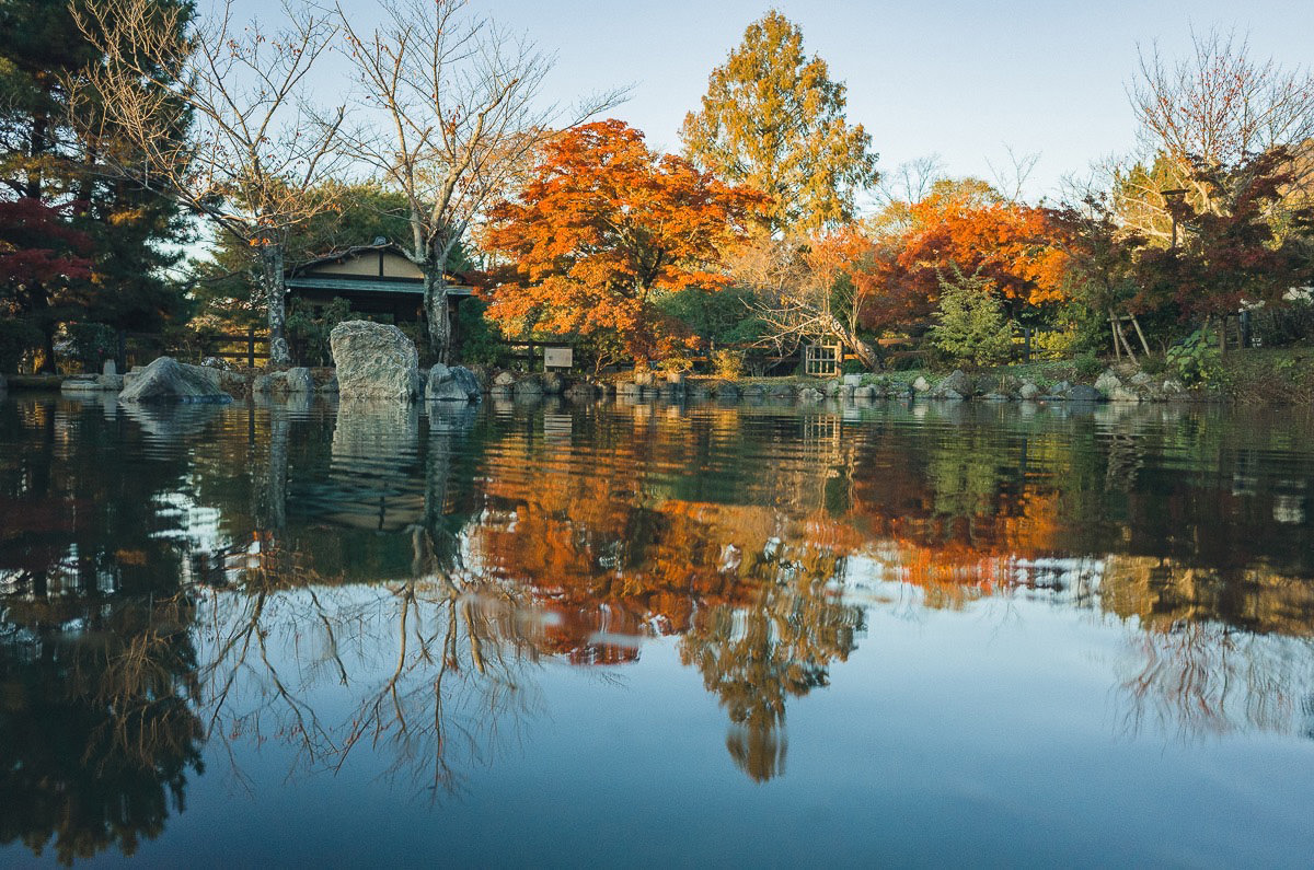 Te beauty of Kyoto in fall