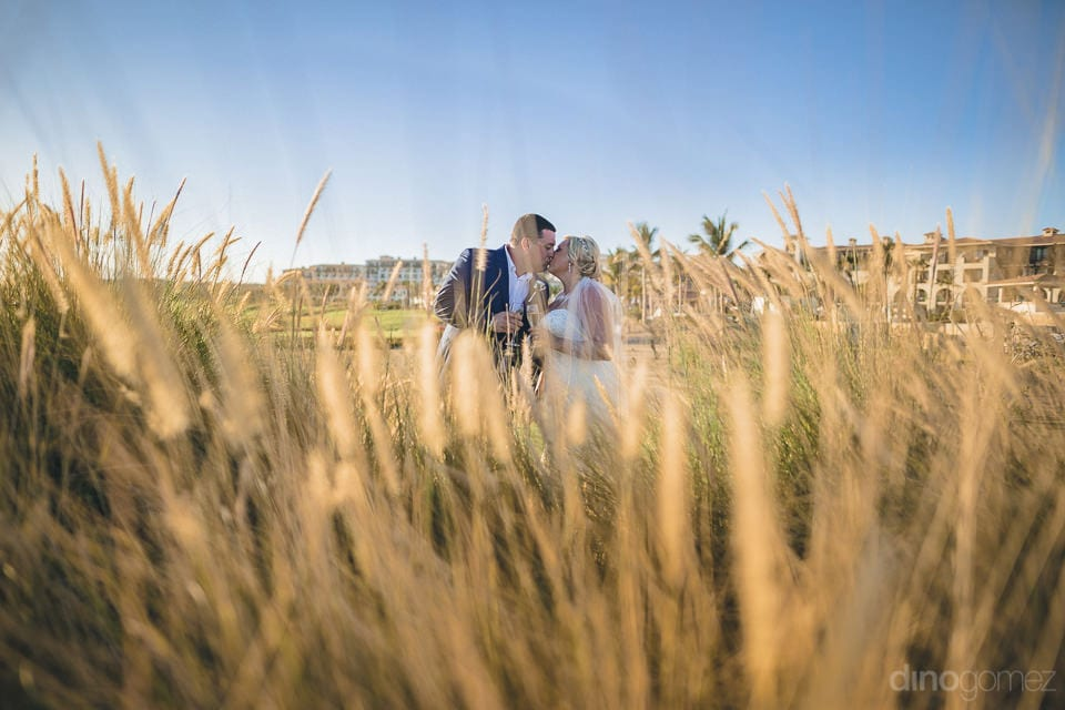 The couple is kissing each other among the golden bushes under the sky-Shannon & Jordan