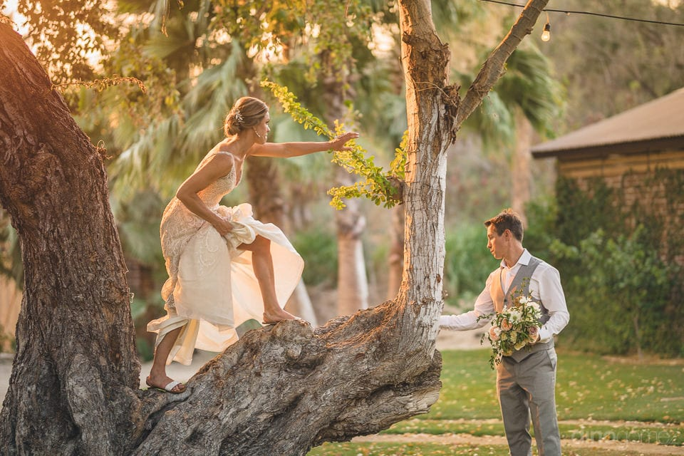 The bride is climbing a huge tree planted at the farm house where the wedding was held of the couple- Heather & Ross
