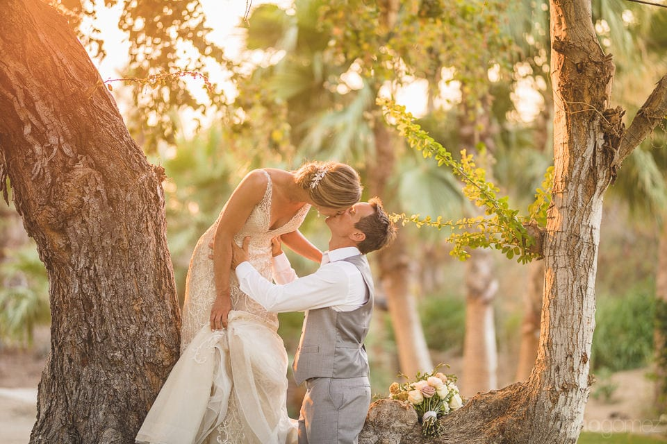 Gorgeous bride is kissing her husband while standing on the branch of a huge tree- Heather & Ross