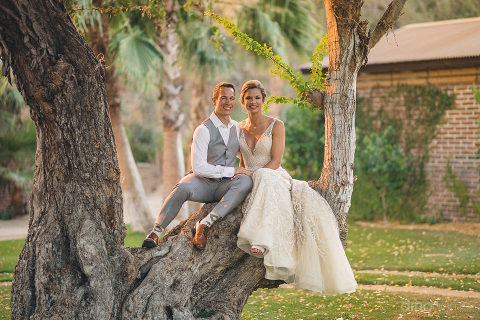 Beautiful couple is sitting on the branch of a big tree and happily posing for the camera- Heather & Ross