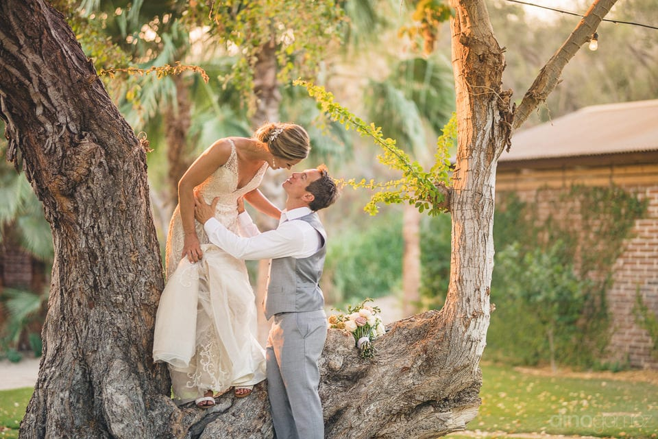 The bride is standing on a branch of a big tree and the groom is holding her from the ground- Heather & Ross