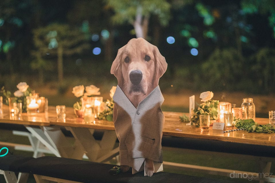A cute hoarding of the dog can be seen placed on the dinning table at the evening party of the couple- Heather & Ross
