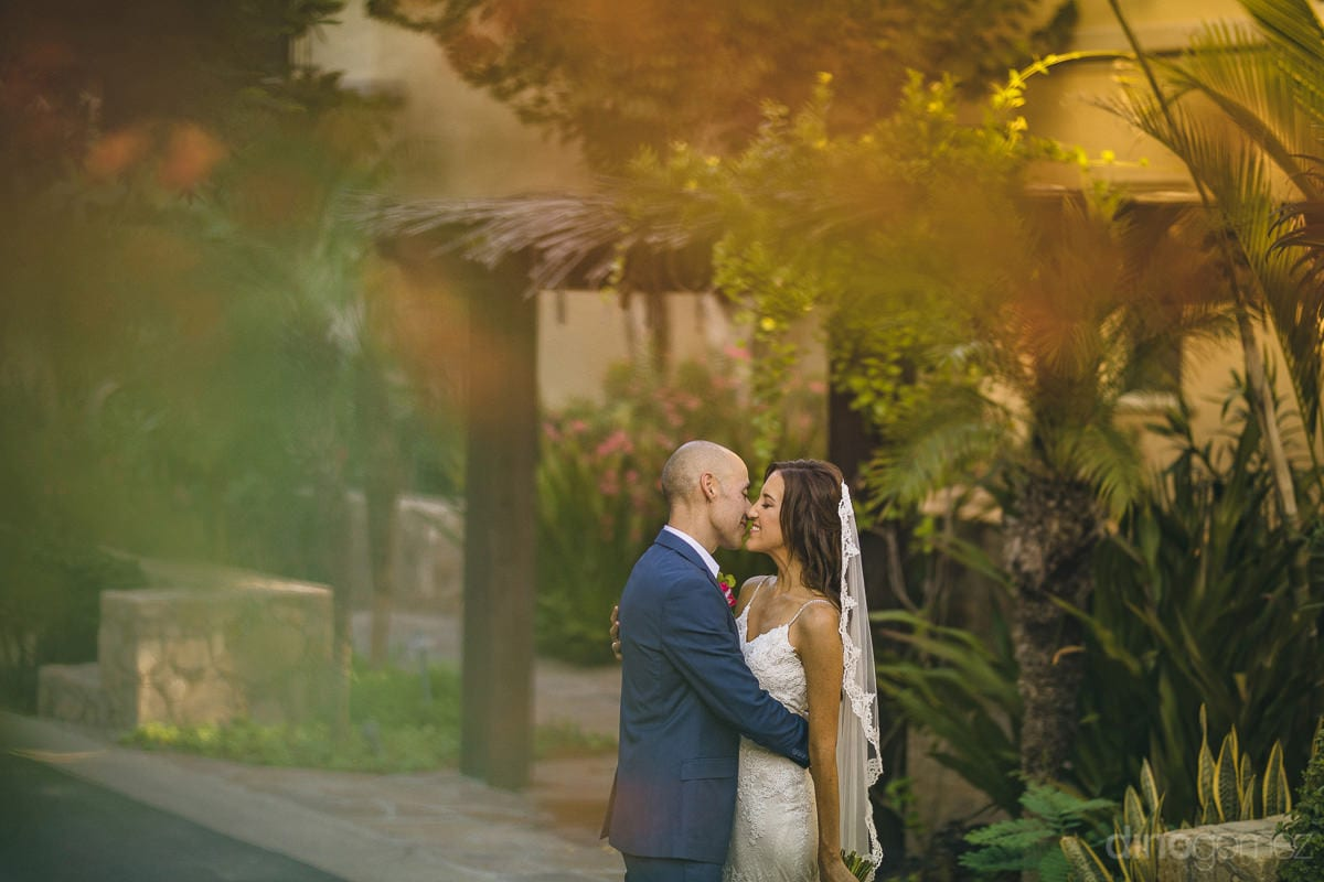 An amazing picture of the lovely couple standing among green plants and about to kiss is taken- Nikki and David