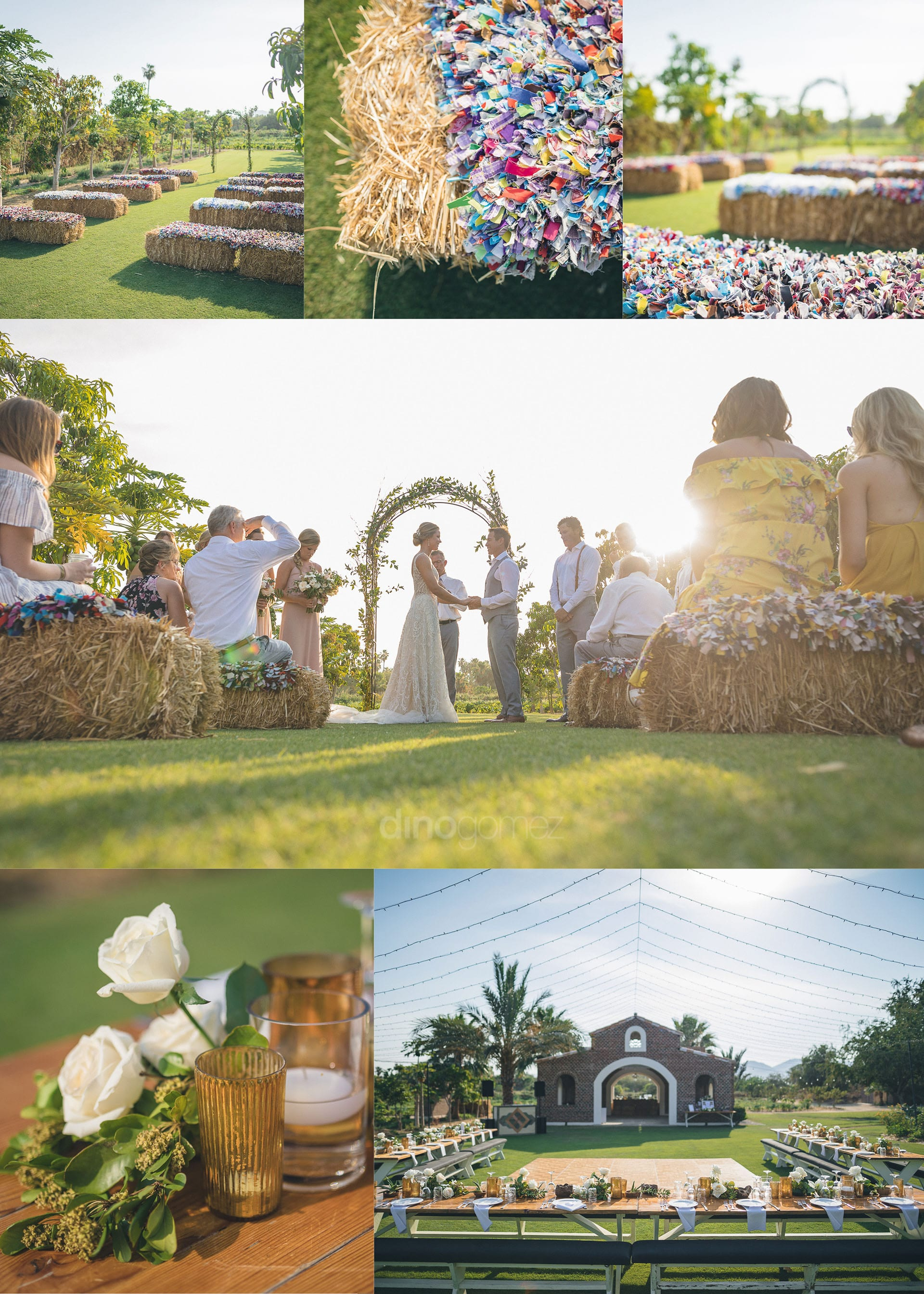 Cabo San Lucas Photographer at an Organic Farm Look Inspiration Board