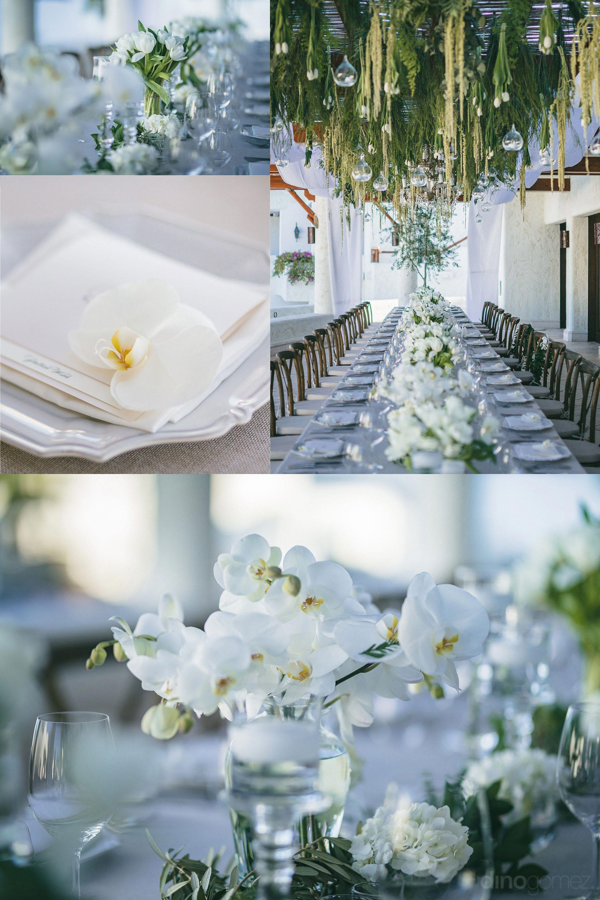 Los Cabos Wedding Photographers Immaculate white Inspiration Board