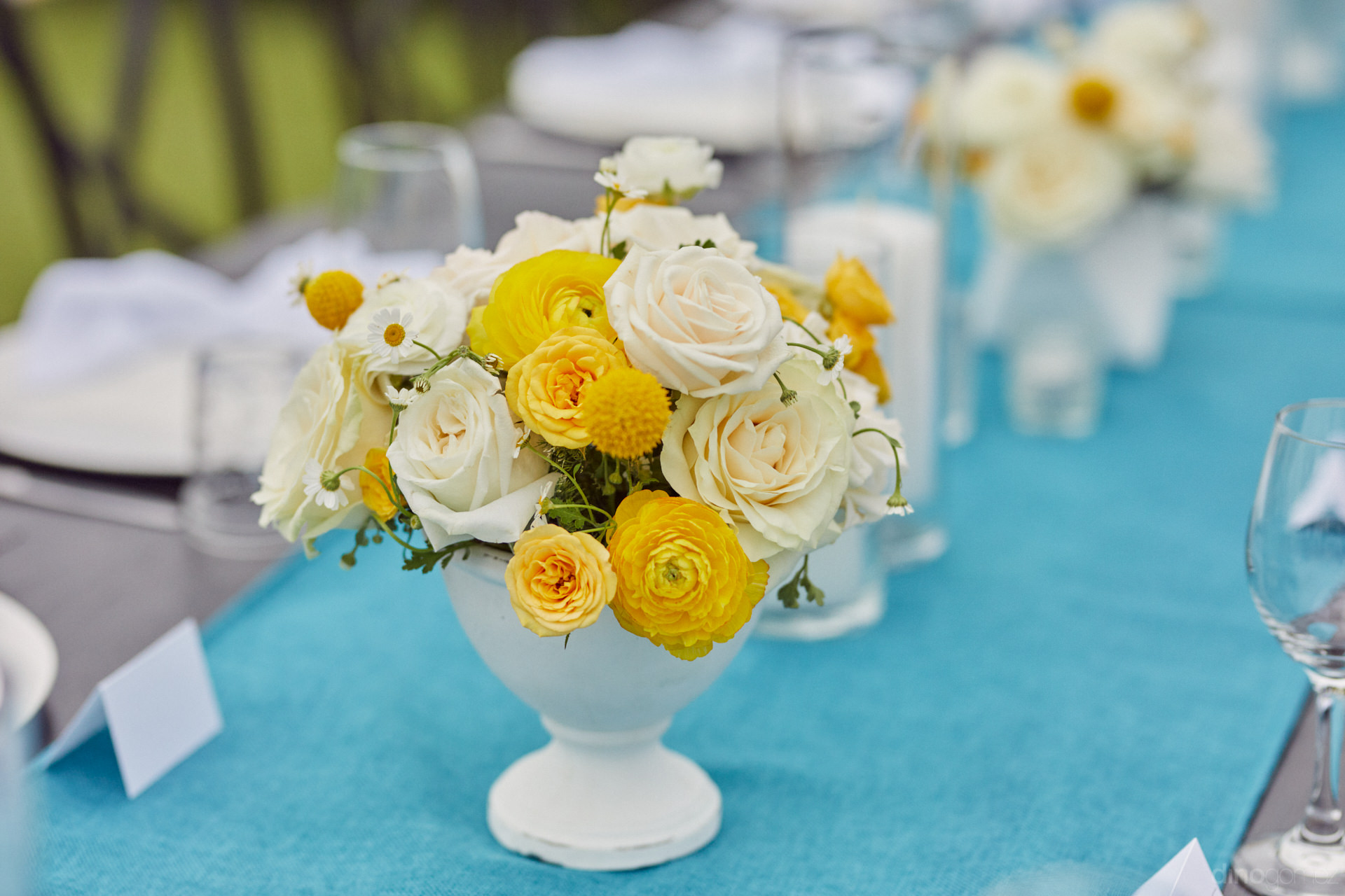Cabo San Lucas Wedding Photographers For Weddings - Hilary & Bryan Flora Wedding