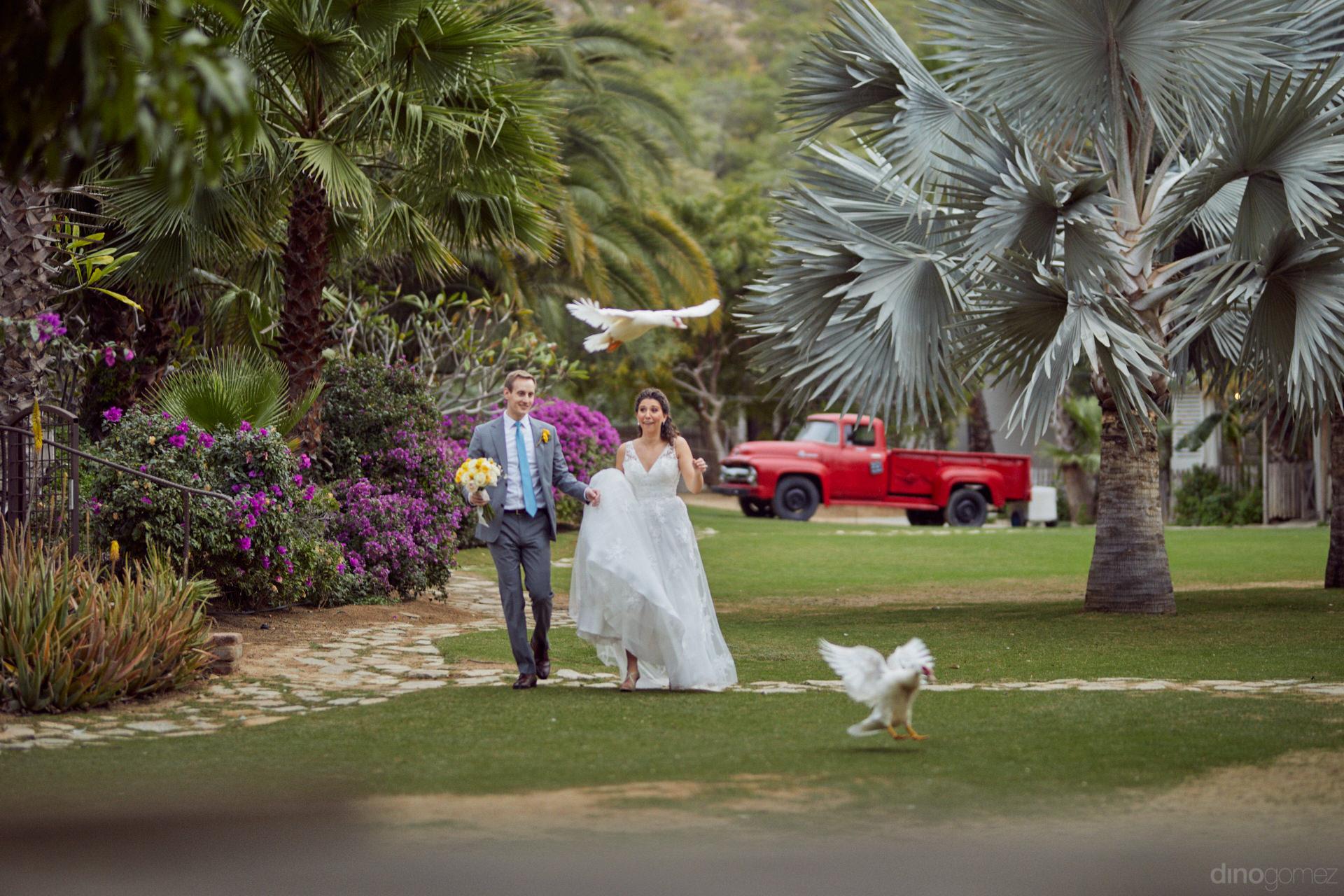 Flora Farms Rentals For Weddings - Hilary & Bryan Flora Wedding