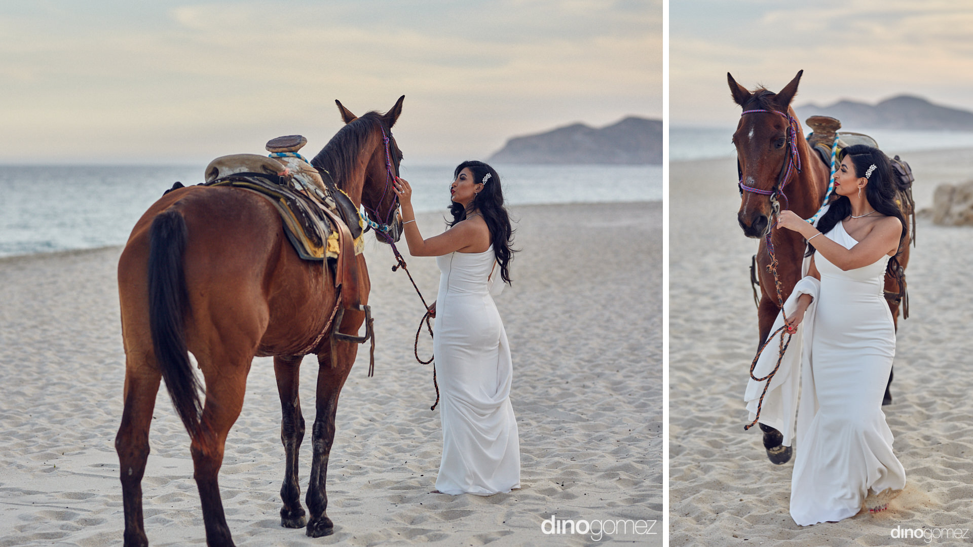 Persian Bride Walking With A Horse On The Beach At Her Destination Wedding In Cabo