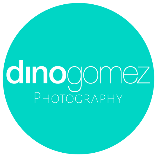 Cabo Wedding Photographer Dino Gomez Logo
