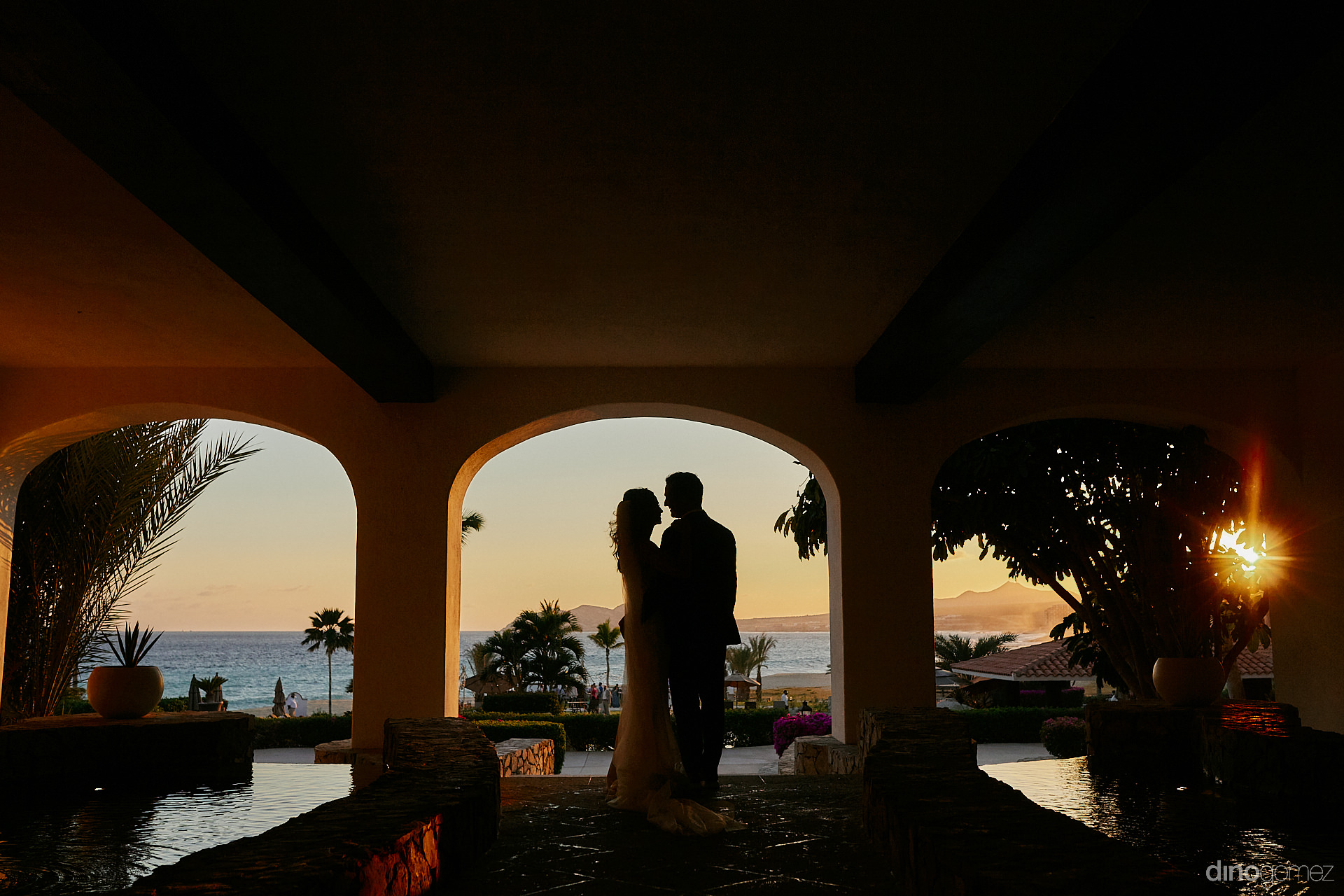 Cabo Wedding Planner - Luxury Wedding Photographer In Cabo Dino Gomez - C&T