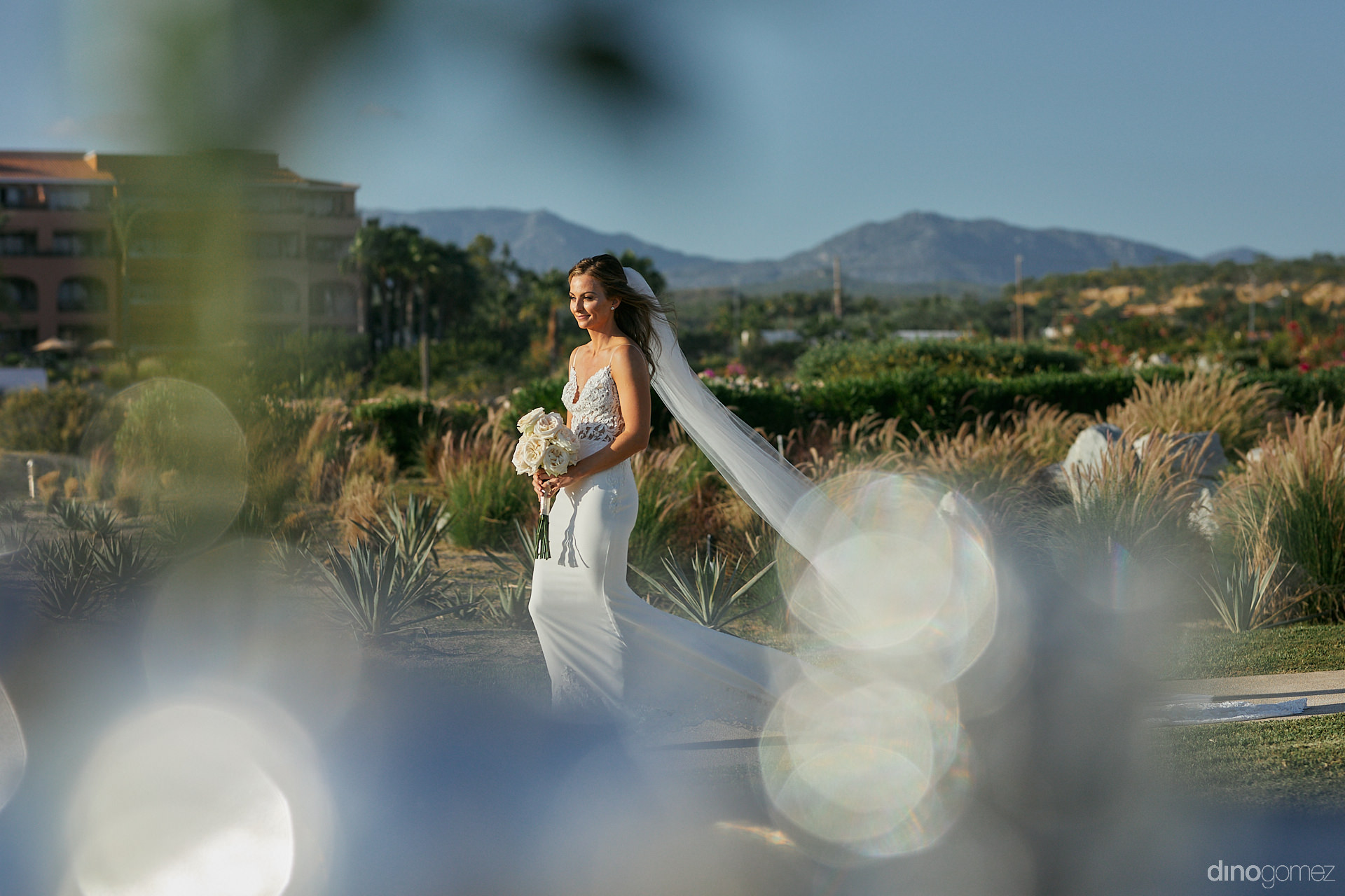 Mexico Wedding Photographer - Luxury Wedding Photographer In Cabo Dino Gomez - C&T