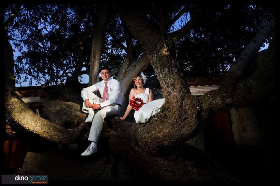 Destination wedding photographer Dino Gomez captures the perfect photo of the bride and groom in a tree